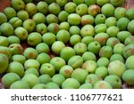 Fruits Of Japanese Plums Are I...
