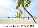 coconut tree  maldives | Shutterstock . vector #110691131