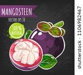 fresh mangosteen fruit bright... | Shutterstock .eps vector #1106982467