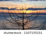 sunset over the solitaire tree... | Shutterstock . vector #1107155231
