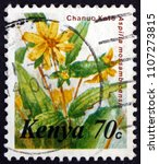 Small photo of CROATIA ZAGREB, 19 MAY 2018: a stamp printed in Kenya shows Aspilia Mossambicensis, Flowering Plant, circa 1983