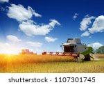harvester harvests. combine... | Shutterstock . vector #1107301745