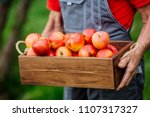 farmer with freshly harvested...