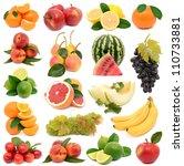 fresh fruit for all tastes | Shutterstock . vector #110733881