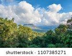 a stunning mix between tropical ... | Shutterstock . vector #1107385271
