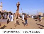 march 9  2018 cairo  egypt ... | Shutterstock . vector #1107518309