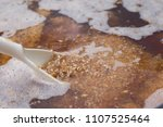 surface of craft beer during... | Shutterstock . vector #1107525464