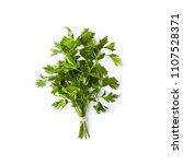 bunch of fresh organic parsley  ... | Shutterstock . vector #1107528371