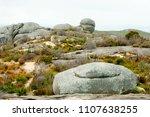 stony hill   albany   australia | Shutterstock . vector #1107638255
