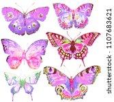 beautiful pink butterfly... | Shutterstock . vector #1107683621