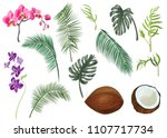 collection tropical plants ...   Shutterstock .eps vector #1107717734