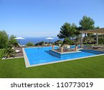 swimming pool with an islet in... | Shutterstock . vector #110773019