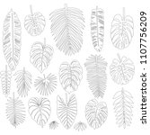 set of leaves in the contour... | Shutterstock .eps vector #1107756209
