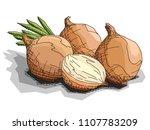 vector illustration graphic... | Shutterstock .eps vector #1107783209