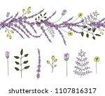 vector  set of garden plant... | Shutterstock .eps vector #1107816317