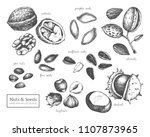vector collection of hand drawn ... | Shutterstock .eps vector #1107873965