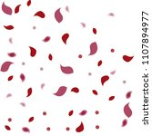 abstract flower petals confetti ... | Shutterstock .eps vector #1107894977