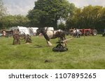 Small photo of 28th May 2018- A horse walking in a circle to turn a gear wheel which turns a shaft to drive some machinery at a vintage show near Newcastle Emlyn, Carmarthenshire, Wales, UK.