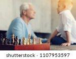 favorite game. beautiful old... | Shutterstock . vector #1107953597