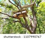 old bee hive on a oak tree.... | Shutterstock . vector #1107990767