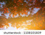 autumn is one of the most... | Shutterstock . vector #1108101839