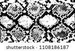 snake skin  texture. grunge... | Shutterstock .eps vector #1108186187