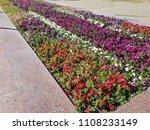 landscape view of a beautiful... | Shutterstock . vector #1108233149