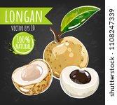 longan. fresh fruit bright...   Shutterstock .eps vector #1108247339