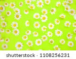 Closeup Of Beautiful Daisies O...