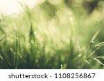 natural abstract soft green...   Shutterstock . vector #1108256867