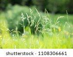fresh green grass with dew...   Shutterstock . vector #1108306661