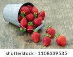 small bucket with delicious... | Shutterstock . vector #1108339535