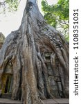 ta prohm temple with giant... | Shutterstock . vector #1108351031