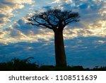 silhouette of ... | Shutterstock . vector #1108511639