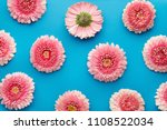 spring flowers pattern isolated ... | Shutterstock . vector #1108522034