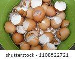 Eggs Shell In The Bin
