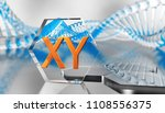 x  and y chromosome  dna  3d... | Shutterstock . vector #1108556375