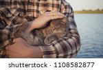 young guy stroking a cat on the ... | Shutterstock . vector #1108582877