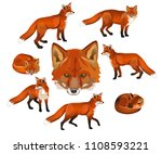 red fox set. vector... | Shutterstock .eps vector #1108593221