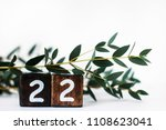 number 22   twenty two   | Shutterstock . vector #1108623041