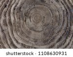 Small photo of A circular pattern of a tree stump looks like ascending circles. within a circle. The wood is dark gray and old with the ring patterns being slightly darker. The rings are most prominent on the side.