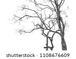 the branches of trees and trees ...   Shutterstock . vector #1108676609