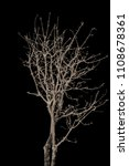 the branches of trees and trees ...   Shutterstock . vector #1108678361