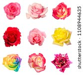 collage of colorful roses in... | Shutterstock . vector #1108944635