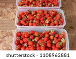strawberry. strawberries in... | Shutterstock . vector #1108962881