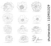 set of flowers  monochrome... | Shutterstock .eps vector #110901329