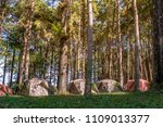 durable military camouflage... | Shutterstock . vector #1109013377