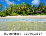 tropical beach on paradise... | Shutterstock . vector #1109013917