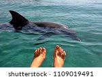 female feet in the water... | Shutterstock . vector #1109019491