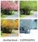 Four Seasons Photographed From...